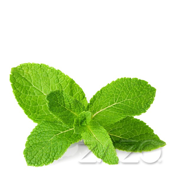Mint 0mg 10ml